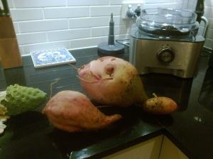 First sweet potato Feb 2013