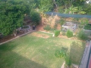 EF Garden Nov 2014
